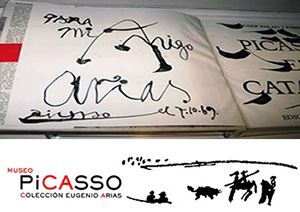 Banner Museo Picasso Buitra